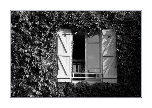 window-on-montmartre 283645754 o