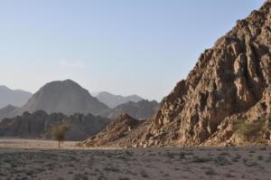 2010-10 Sharm el-Sheikh