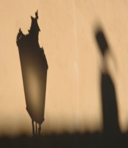 shadow-on-the-wall 276568275 o