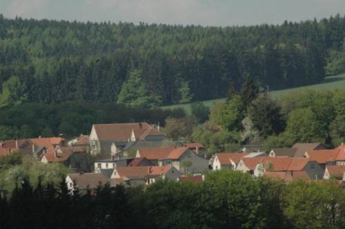 2006 Lipová/Seč